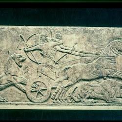 51 - Cacería de Leones de Asur-Nasir-Pal II (Londres. Museo Británico)
