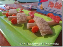 airplane snacks - The Backyard Farmwife
