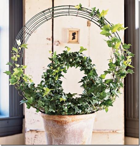 topiary circles