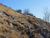 Prečenje pobočja Lipnika