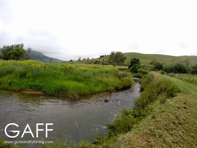 Dorps River (1).jpg