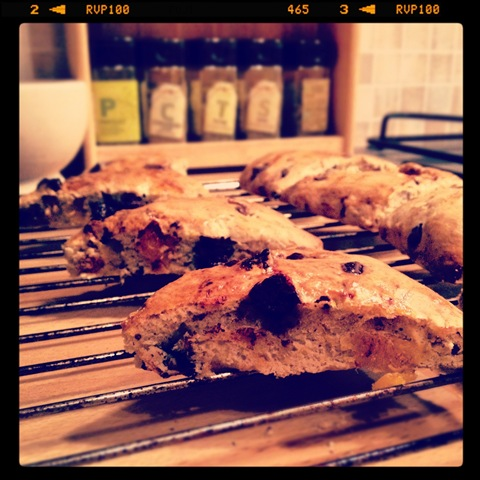 #345 - apricot and chocolate scones