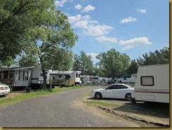 2011-7-4 carols campsite ontario canada (11) (800x600)