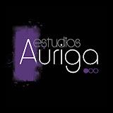 ESTUDIOS AURIGA