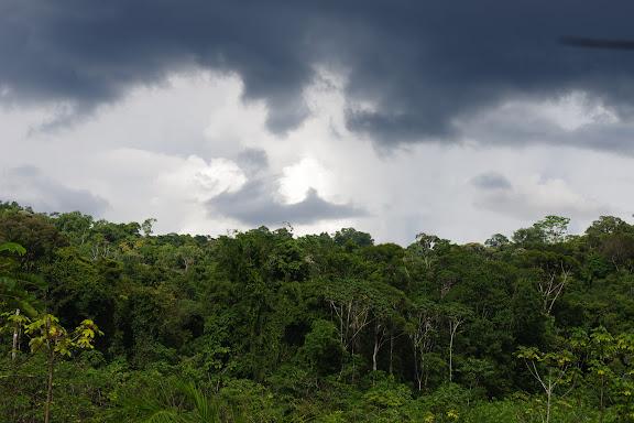 Avant la pluie. Les Carbets de Coralie (Crique Yaoni), 1er novembre 2012. Photo : J.-M. Gayman