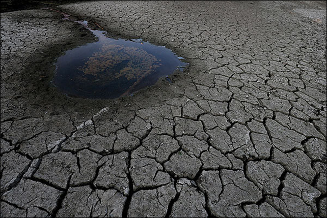 A small pool of water is surrounded by dried and cracked earth at the bottom of the Almaden Reservoir in San Jose. Gov. Jerry Brown and President Obama discussed the state's drought situation Wednesday, 29 January 2014. Photo: Justin Sullivan / Getty Images