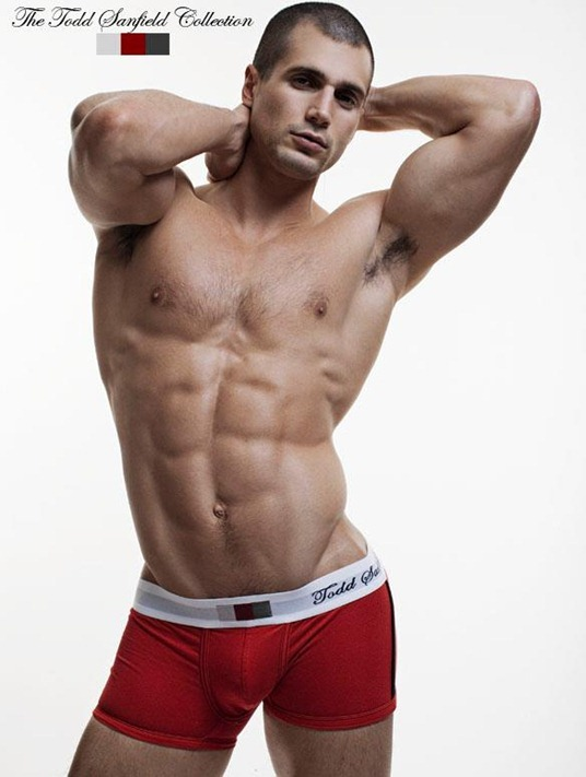 sexy guy for todd sanfield