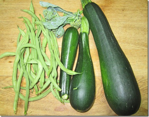 Fortex pole beans and Dunja zucchini