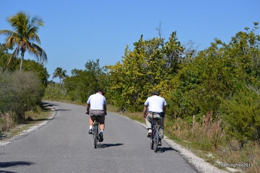 Tom & Ken Biking