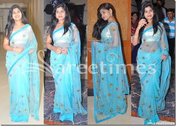 Alekhya_Blue_Embroidery_Net_Saree