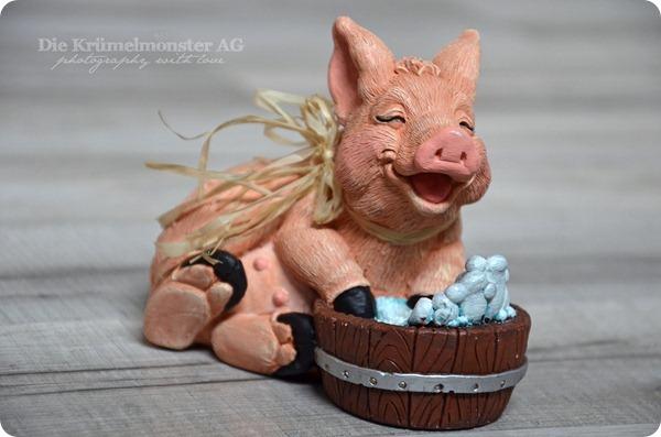 smwizdd 17 Schwein gehabt