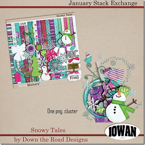 Iowan_snowTalesjan-2012_se-pv-copy[1]