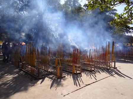 Imagini Lantau: Bete arzand
