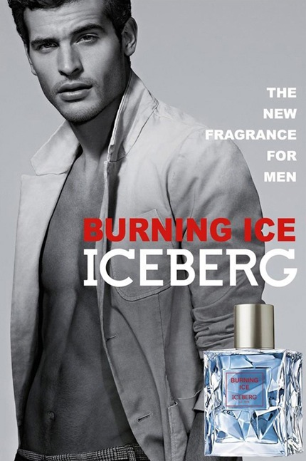 Mathias Chico Hernandez for Iceberg Burning Ice