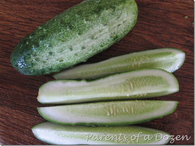 how to make dill pickle juice without pickles