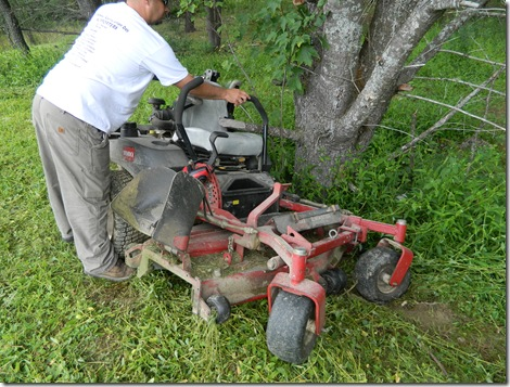 Lawn mower 001