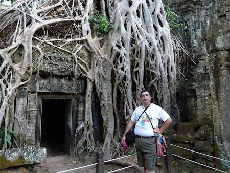 Obiective turistice Angkor: Ta Phrom Angkor