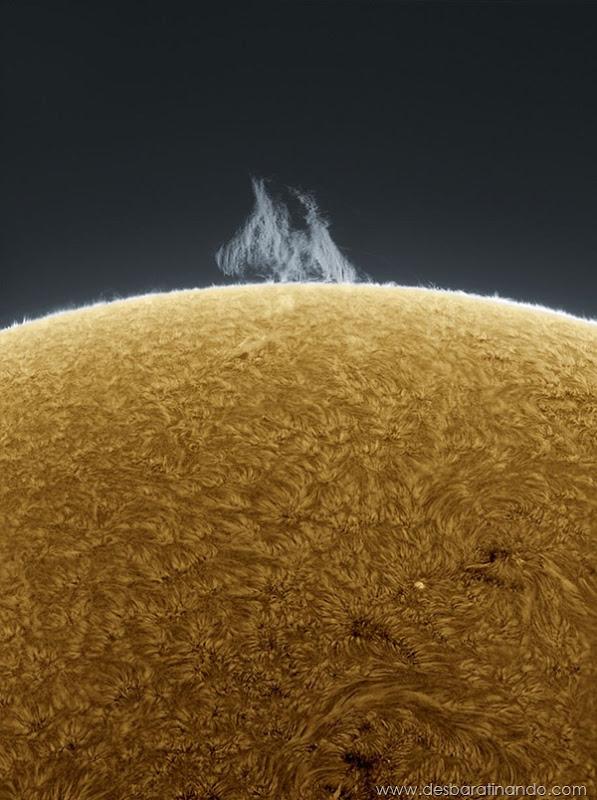 hd-photographs-of-the-sun-alan-friedmans- (8)
