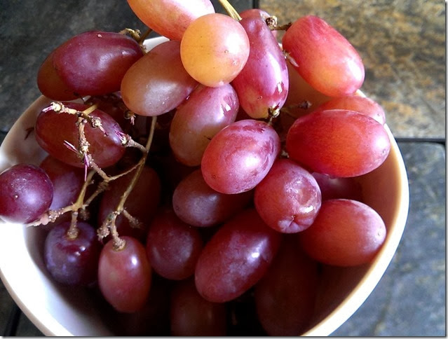grapes-public-domain-pictures-1 (2246)