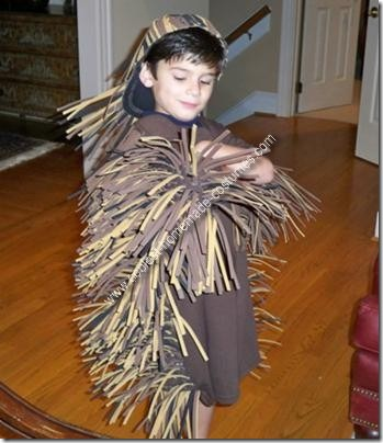 coolest-home-made-porcupine-costume-3-21415786