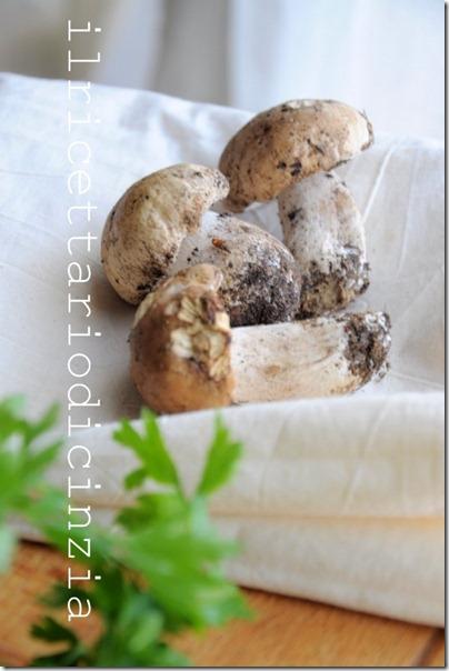 vellutata ai funghi porcini e salsa al prezzemolo