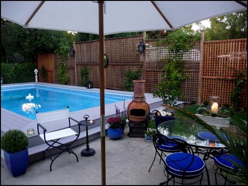Backyard 015 (800x600)