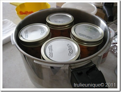 carrots, canning carrots, pressure cooking