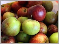 18 free apples
