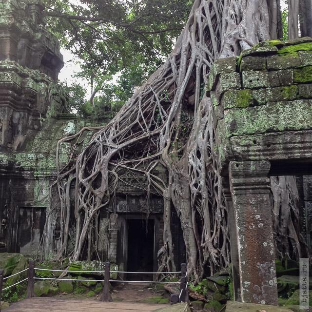 3. Ангкор Том, Angkor Tom. Говорят тут какой-то эпизод с Анджелиной Джоли снимался для Томб Райдер...