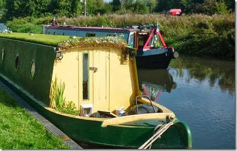 grass roof boat