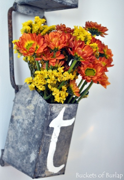 hutch-flowers
