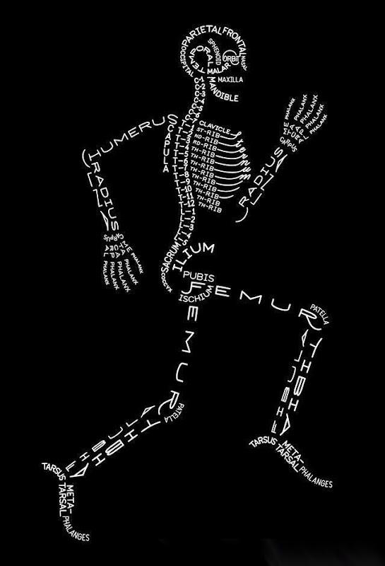 todos os ossos
