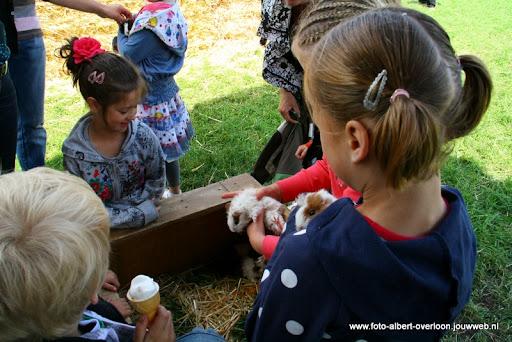 koeien kijken boer martij 18-06-2011 (29).JPG