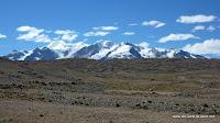 zurück auf dem Altiplano
