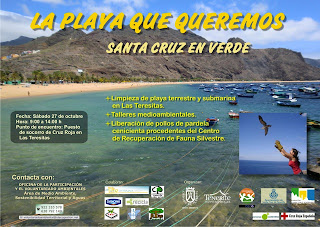cartel la playa que queremos.jpeg