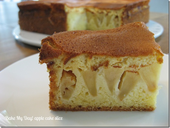 Apple cake slice