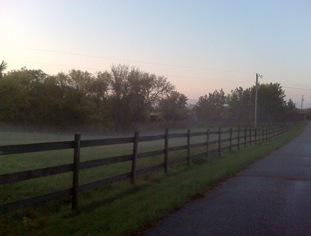 front pasture mist