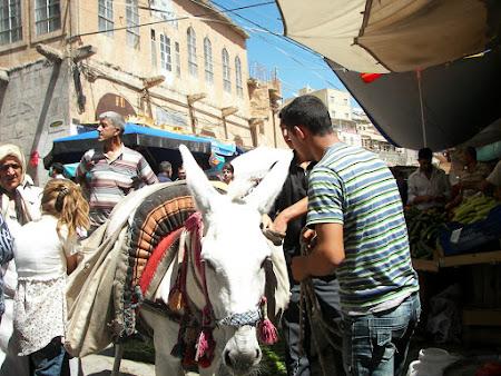bazar Mardin in Kurdistan