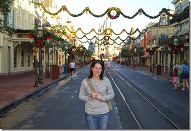 Walt Disney World at Christmas (12)