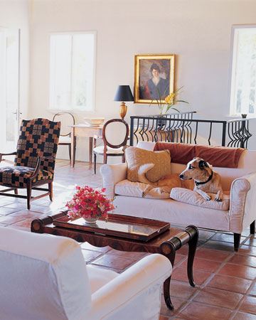 Agba, relaxes on a slipcovered sofa. (Martha Stewart Living)