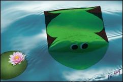 Pochette_Frog (017)
