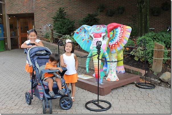 love all the painted elephants