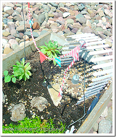 mini garden pennant northern cottage
