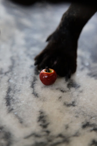 And a perfectly bite-sized apple.