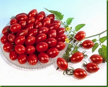Tomate Sugary Cherry