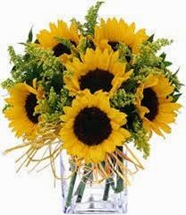 Sunflowers_thumb1