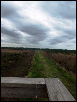 Bolen Bluff Trail-Spring Equinox 023