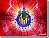 Chivas proximos partidos y boletos