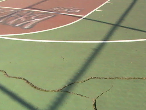 basketball court is cracked.
