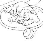 chiens-coloriage_jpg.jpg